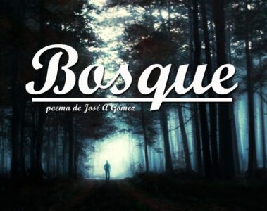 Bosque by Jose A Gomez at spillwords.com