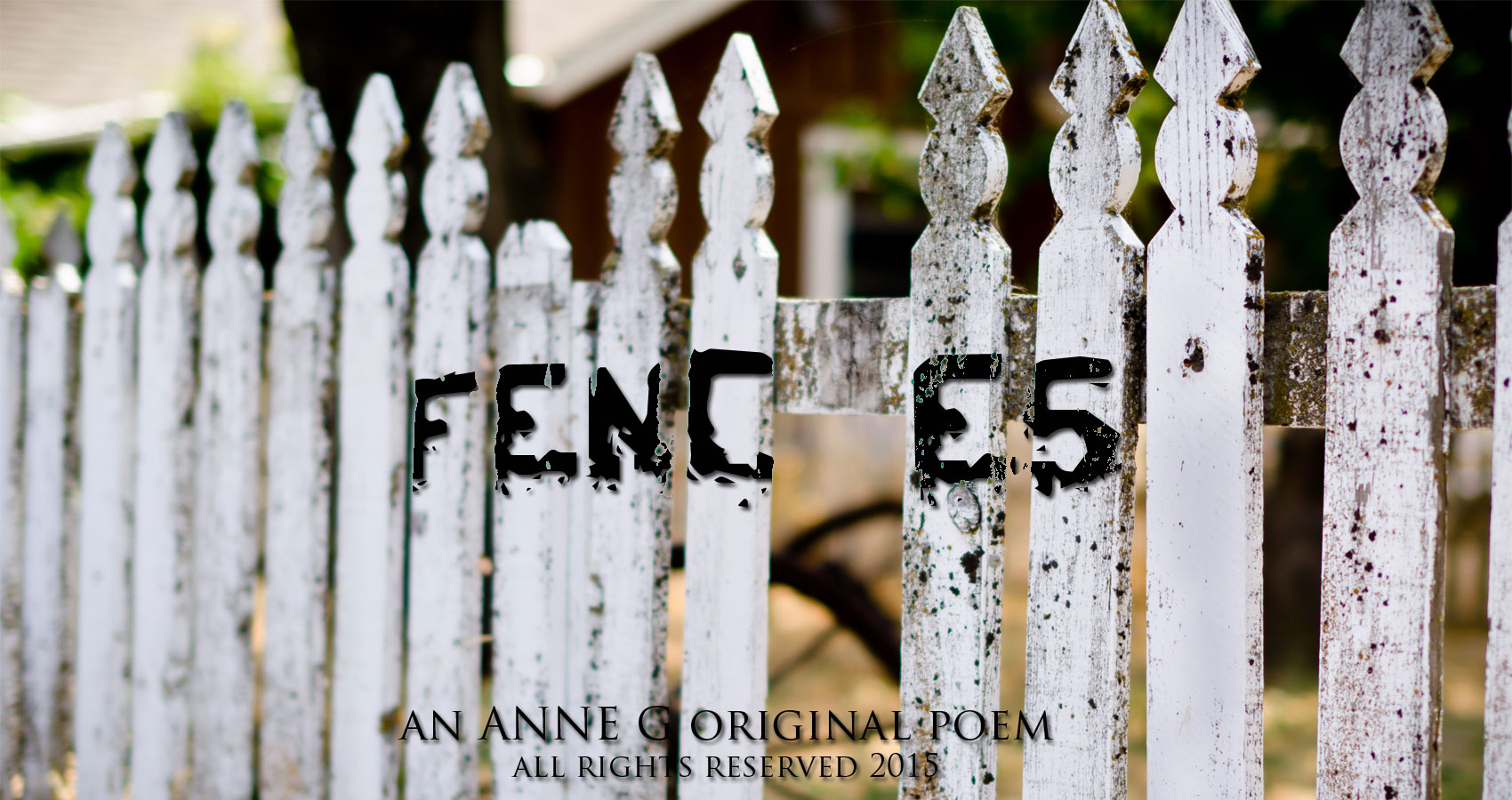 Fences An Anne G Original Poem at spillwords.com political politics