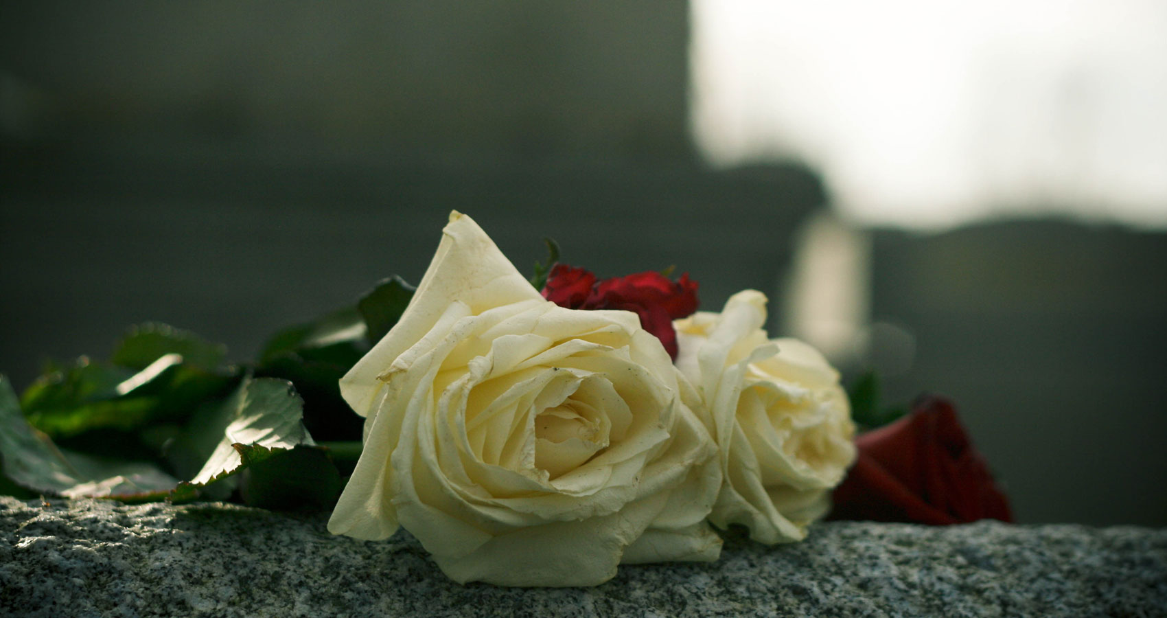 The Grave and The Rose at Spillwords.com