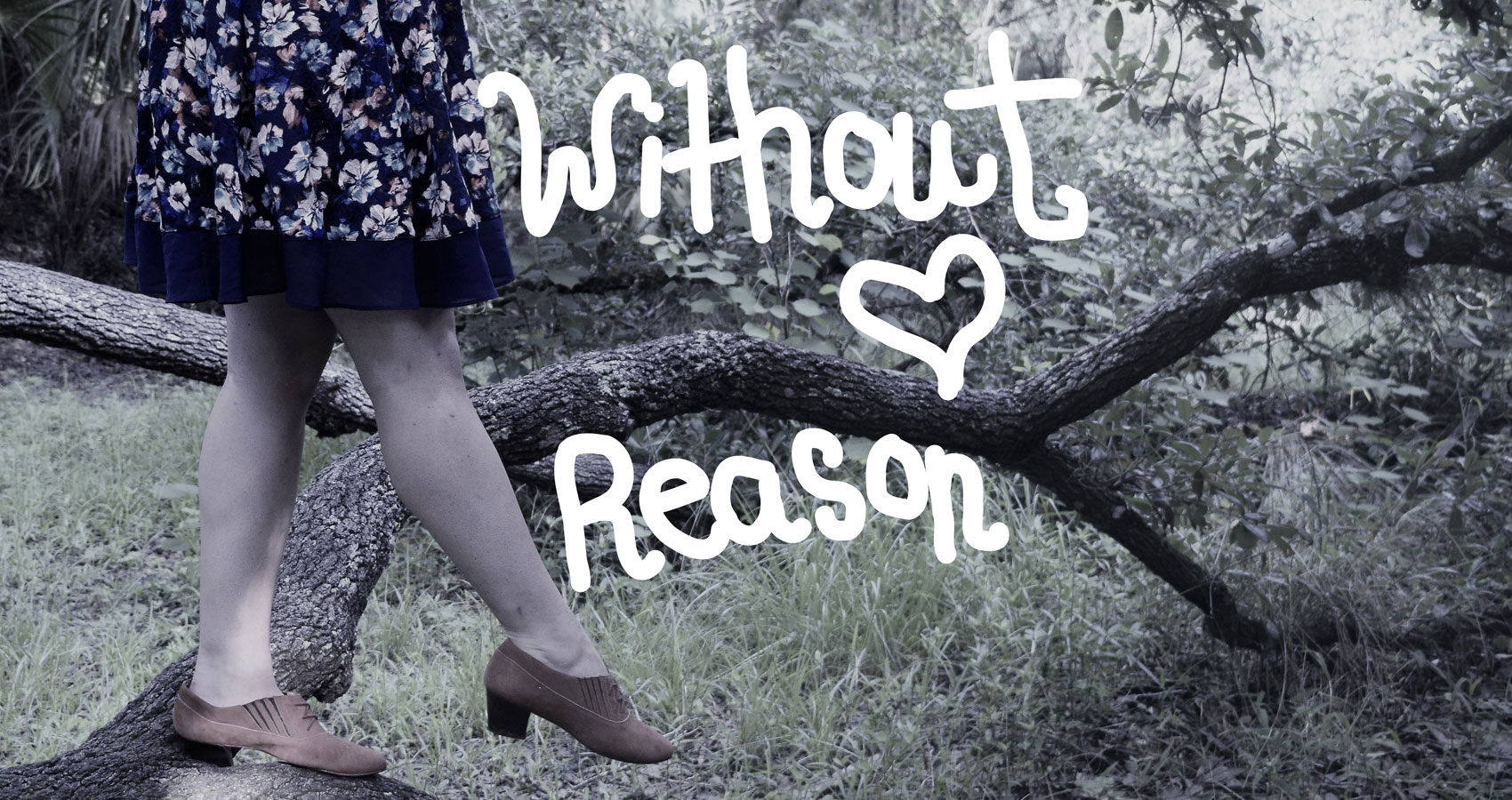 Without Reason series by Alyssa Brocker at Spillwords.com