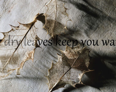 Can dry leaves keep you warm? by Manan Kapoor at Spillwords.com
