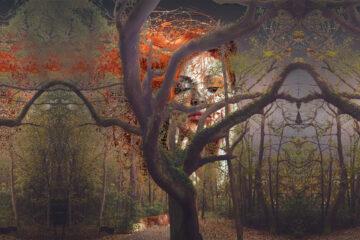 Metaphor, Metamorph at Spillwords.com