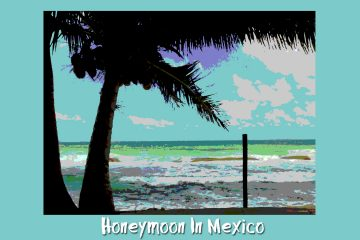 Honeymoon In Mexcio by Thomas Park at Spillwords.com
