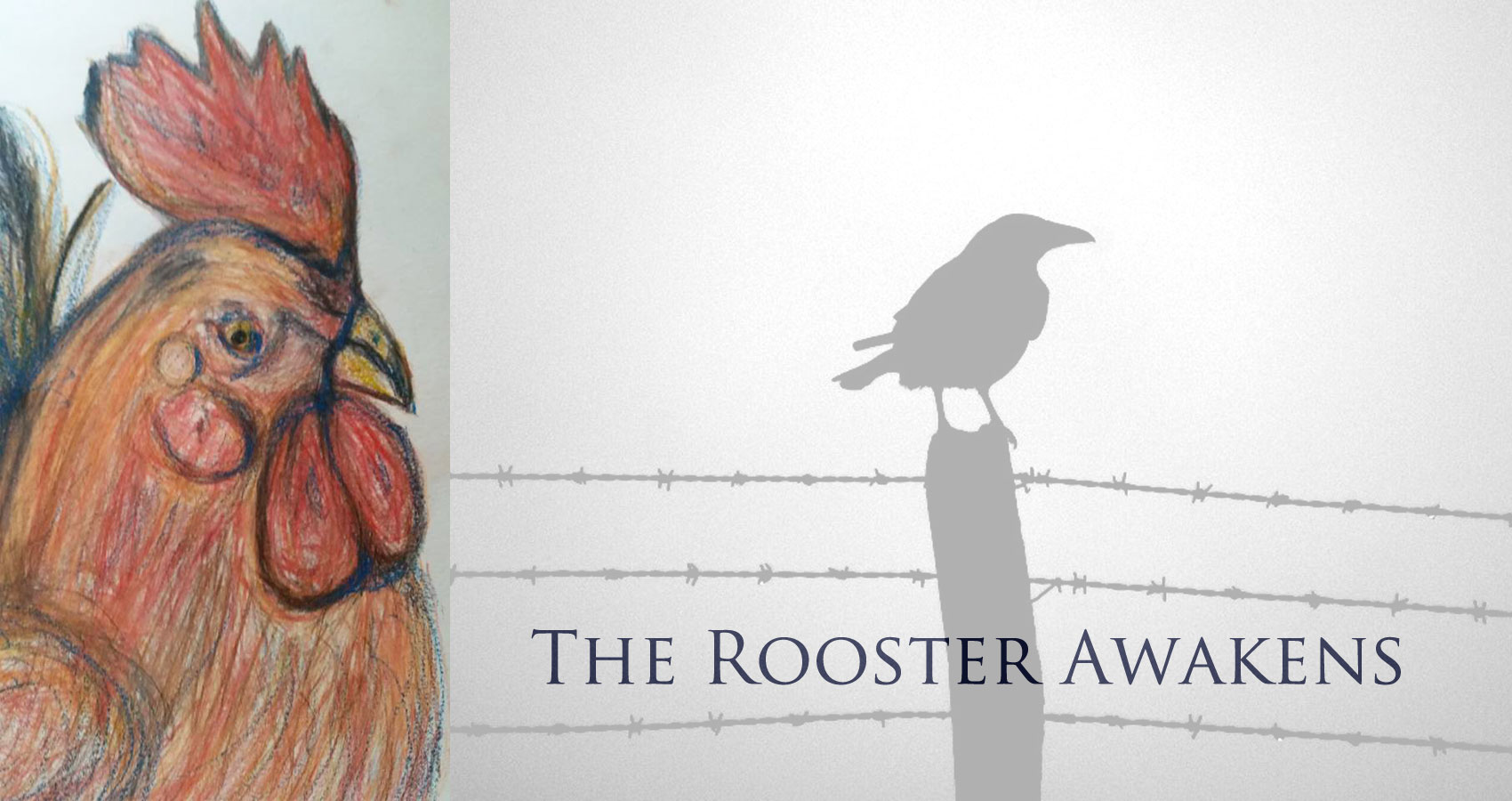 The Rooster Awakens by Mary Bone at Spillwords.com