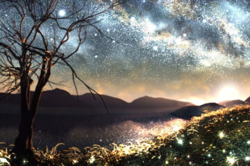 I Came From A Place of Fireflies by Hemmingplay at Spillwords.com