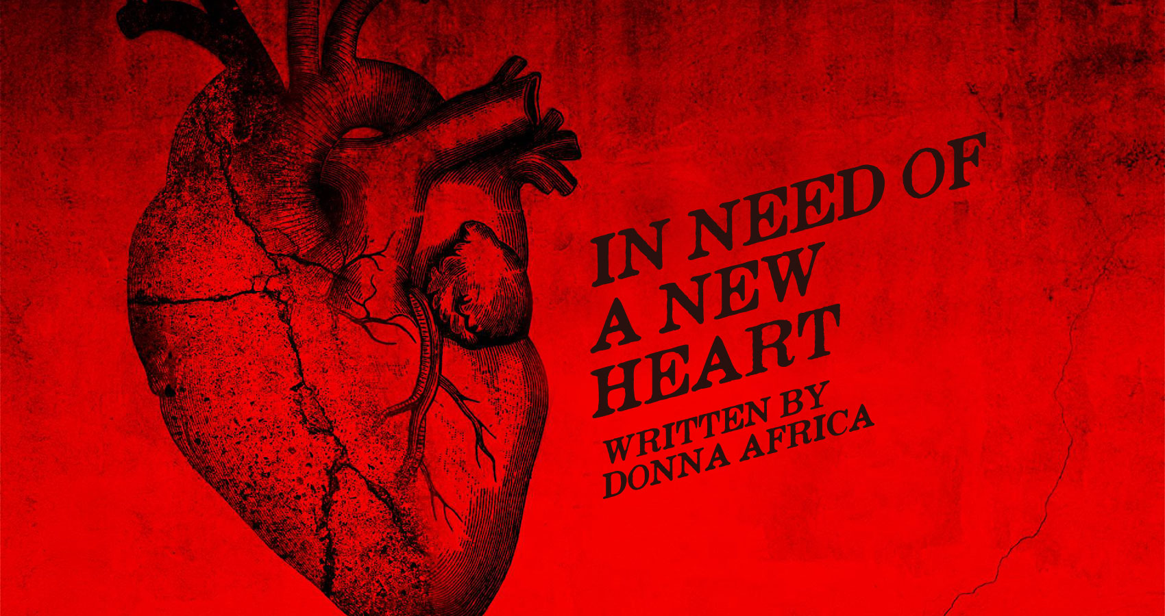 In Need Of A New Heart, by Donna Africa at Spillwords.com
