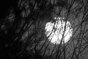 Sister Moon, written by Giovanni Fruncillo at Spillwords.com
