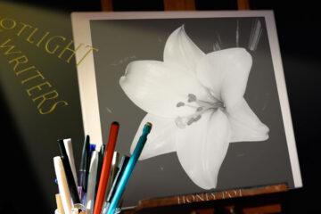 Spotlight On Writers - Honey Pot at Spillwords.com