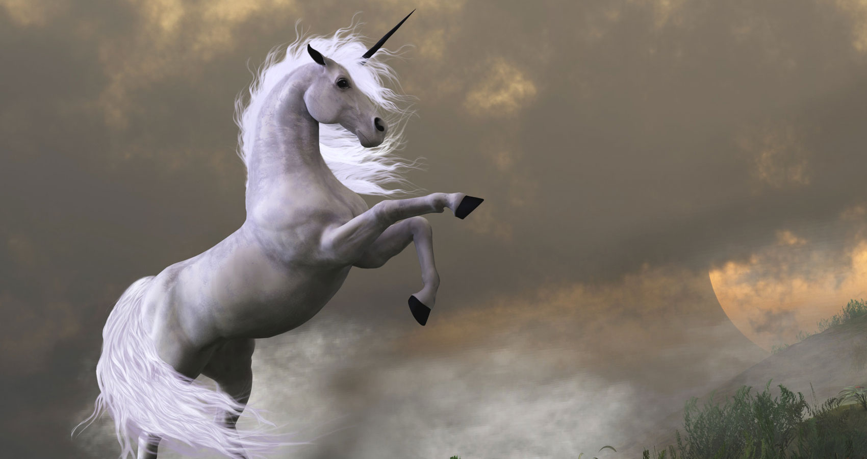 Unicorn written by Rania M M Watts at Spillwords.com