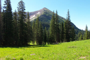 A meadow split so well by Michael Shea at Spillwords.com
