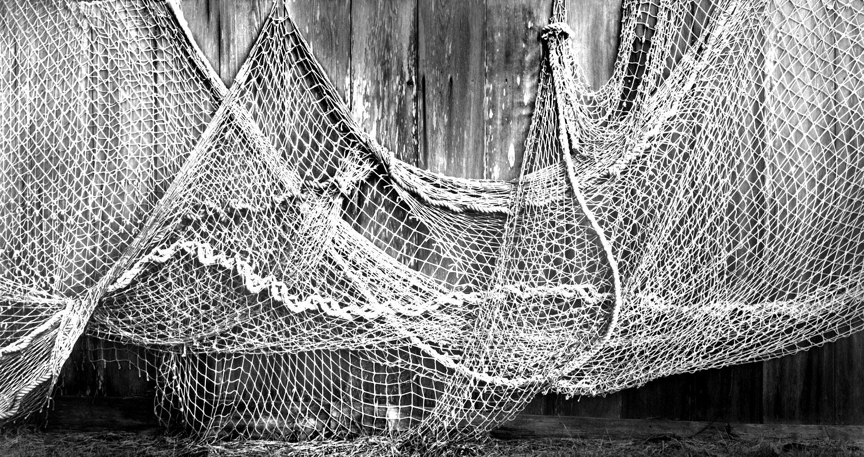 Net written by Isabelle Dear at Spillwords.com