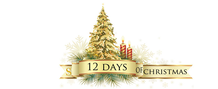 12 Days of Christmas series at Spillwords.com