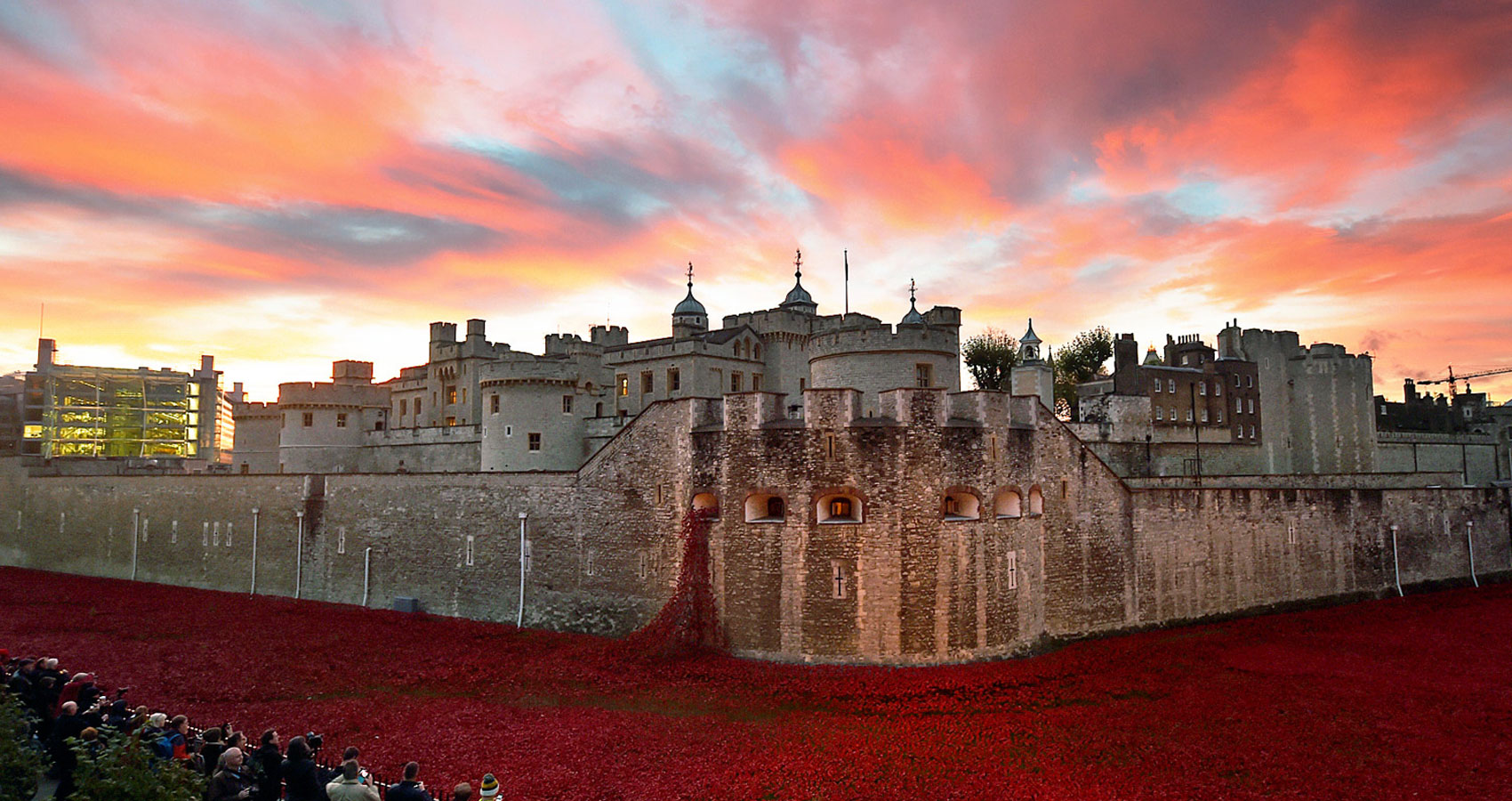 A pause on armistice day by Ian Thompson at Spillwords.com