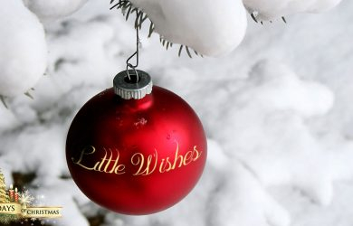 Little Wishes written by TM DiSarro at Spillwords.com