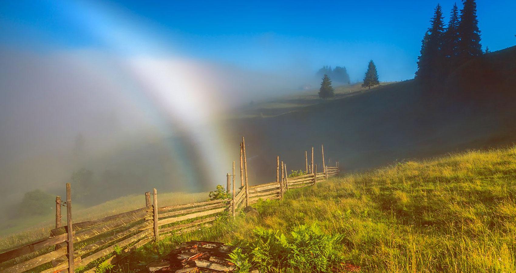 White Rainbow written by Jecht Fair at Spillwords.com