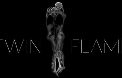Twin Flame by Courtney Trowman at Spillwords.com