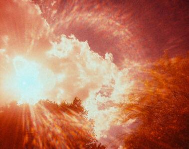 Beauty written by Robbie Pruitt at Spillwords.com