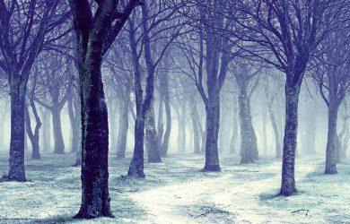 Winter Snow written by John R. Cobb at Spillwords.com