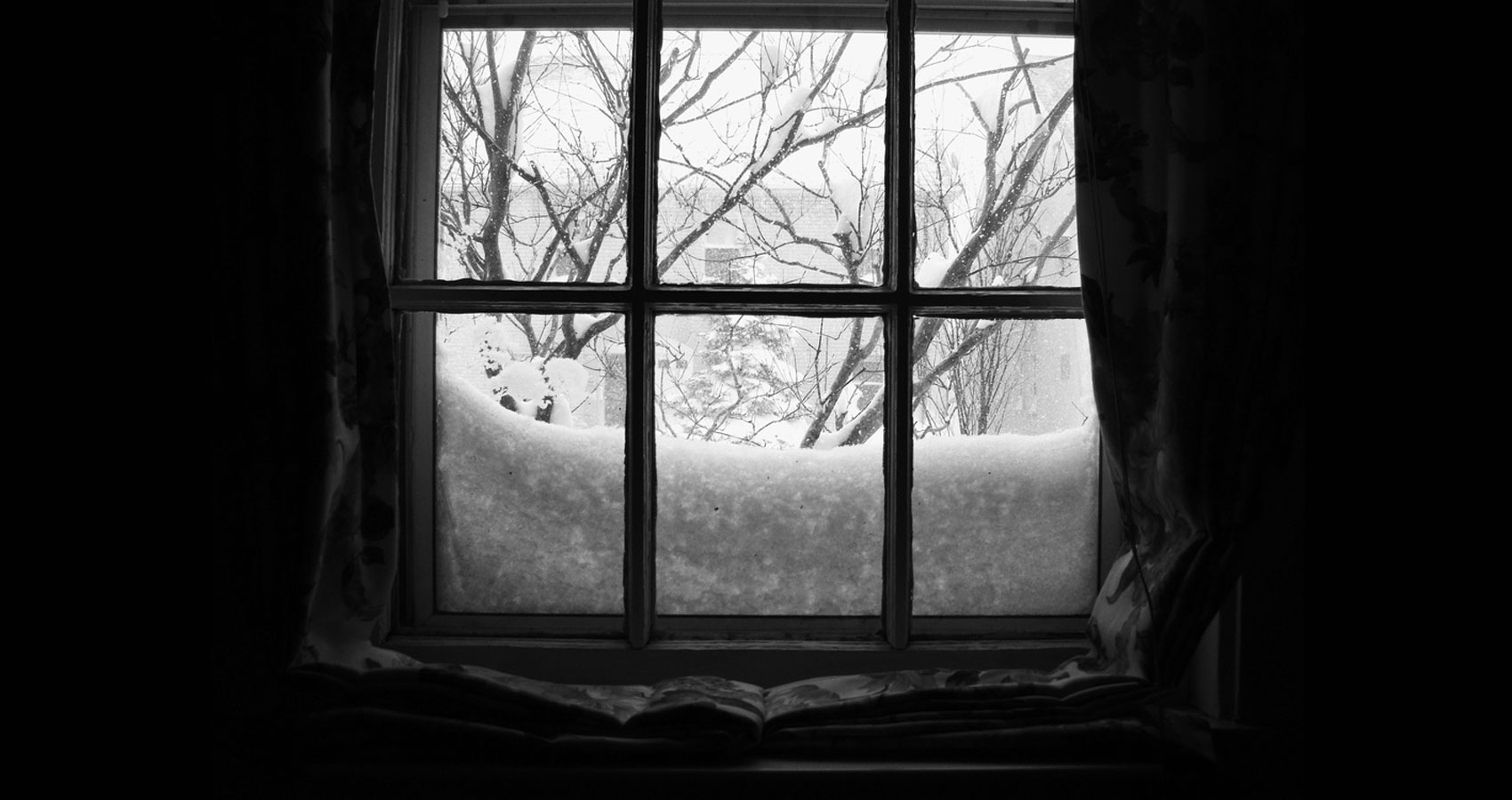 A February view from my window written by Arusha Topazzini at Spillwords.com