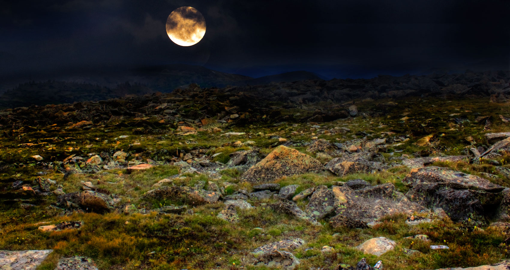 On the Tundra (for M.B. and H.K.) written by ilex fenusova at Spillwords.com