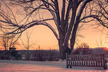 Winter Enlightenment written by TM Arko at Spillwords.com