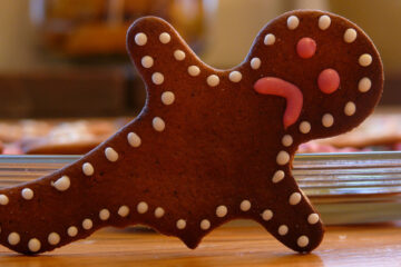 Gingerbread Man written by Lana Wesley at Spillwords.com