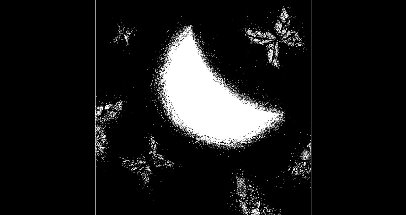 Last Half of Moonlight by Robyn MacKinnon at Spillwords.com