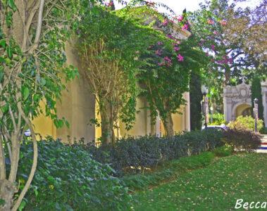 Secret Garden written by Becca Lotus at Spillwords.com