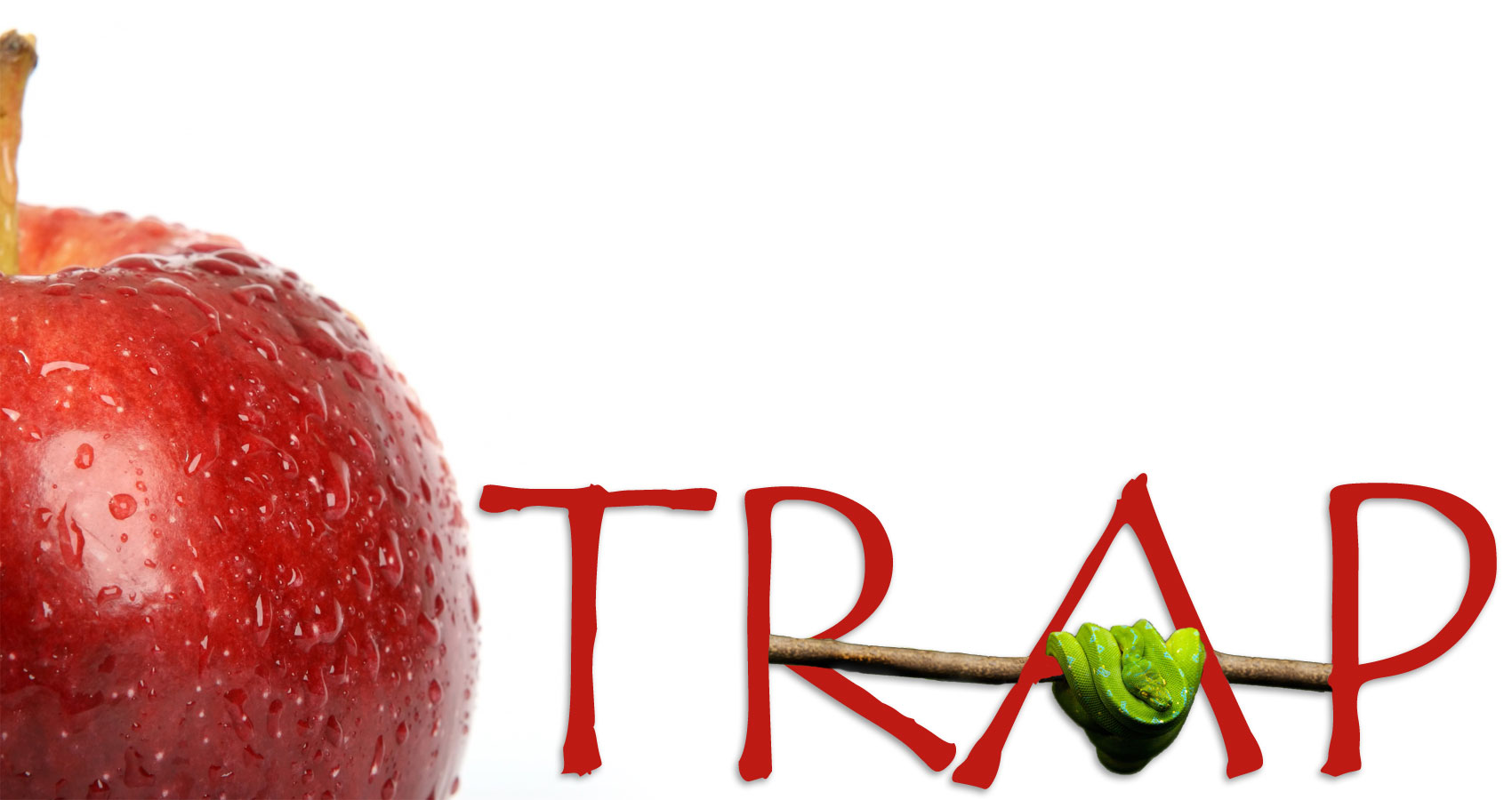 The apple trap written by Poetanp at Spillwords.com