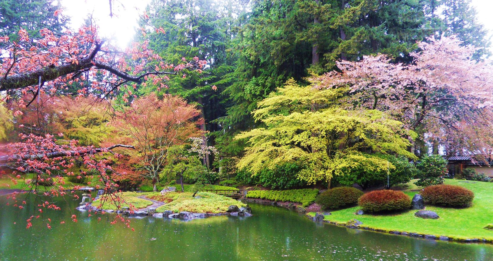 Spring's Moments Of Zen by Charlie Bottle at Spillwords.com