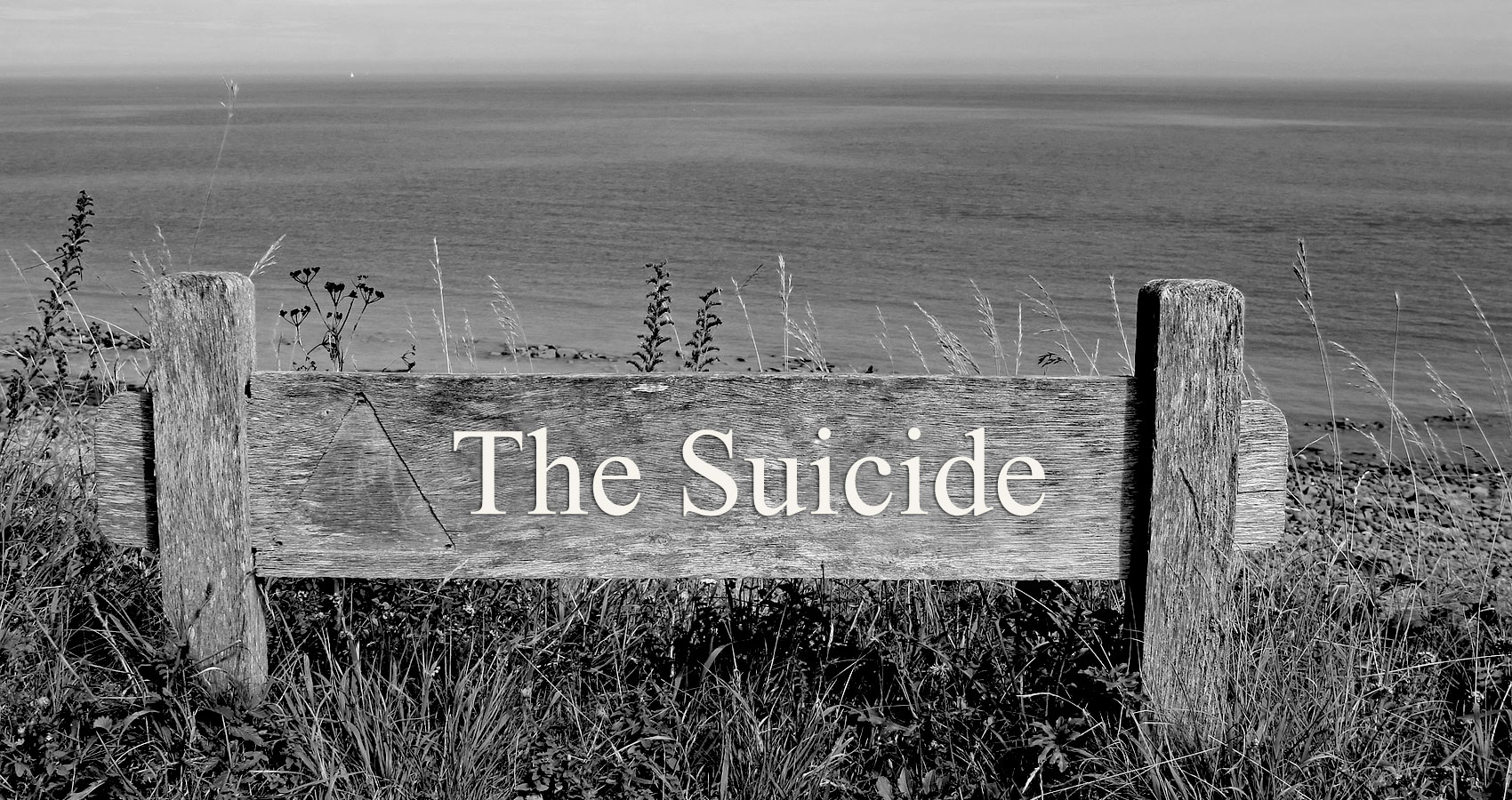 The Suicide written by Steve Pearson at Spillwords.com