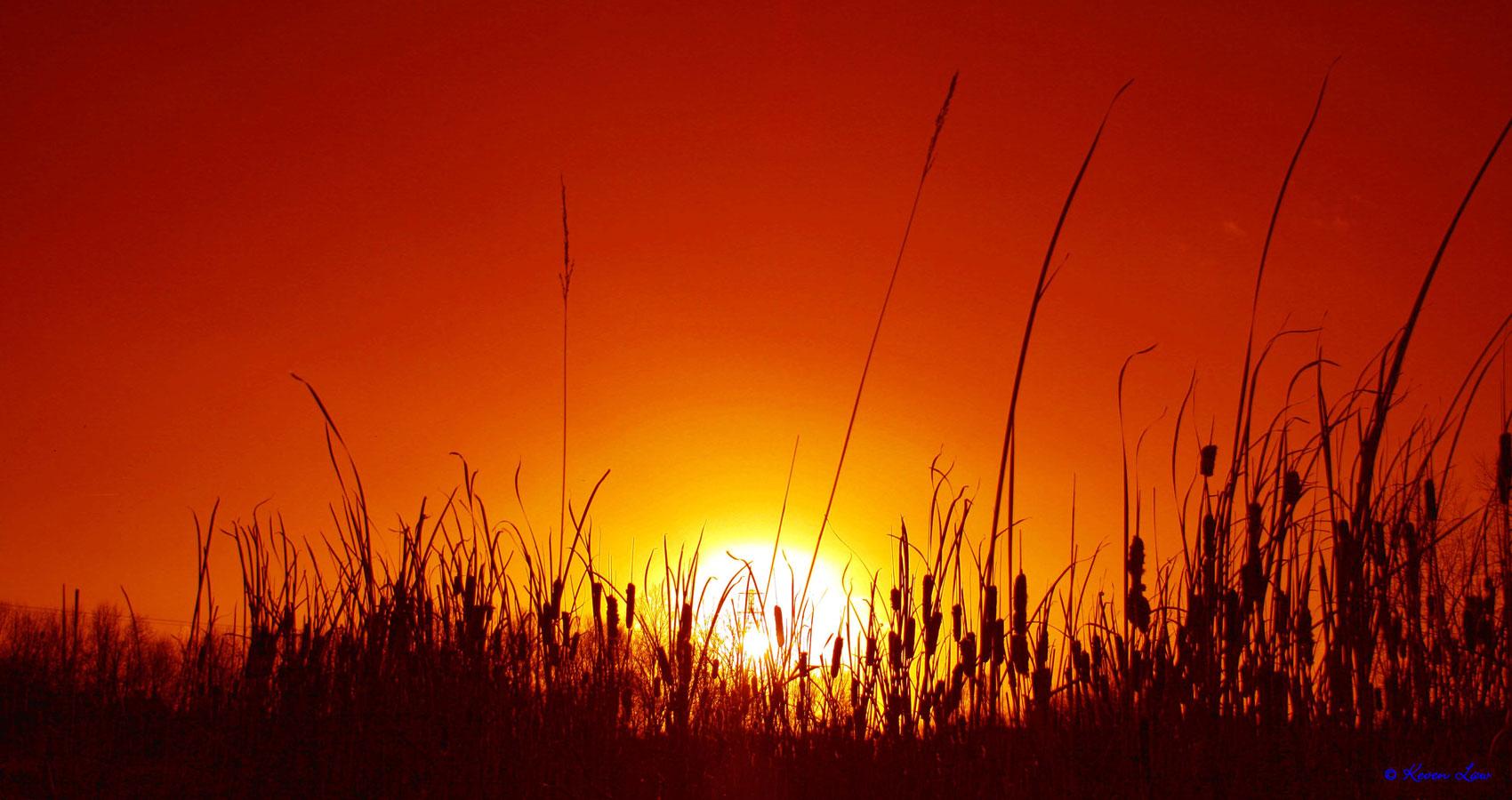 Climbing Heat of Cruellest Summer, written by Stanley Wilkin at Spillwords.com