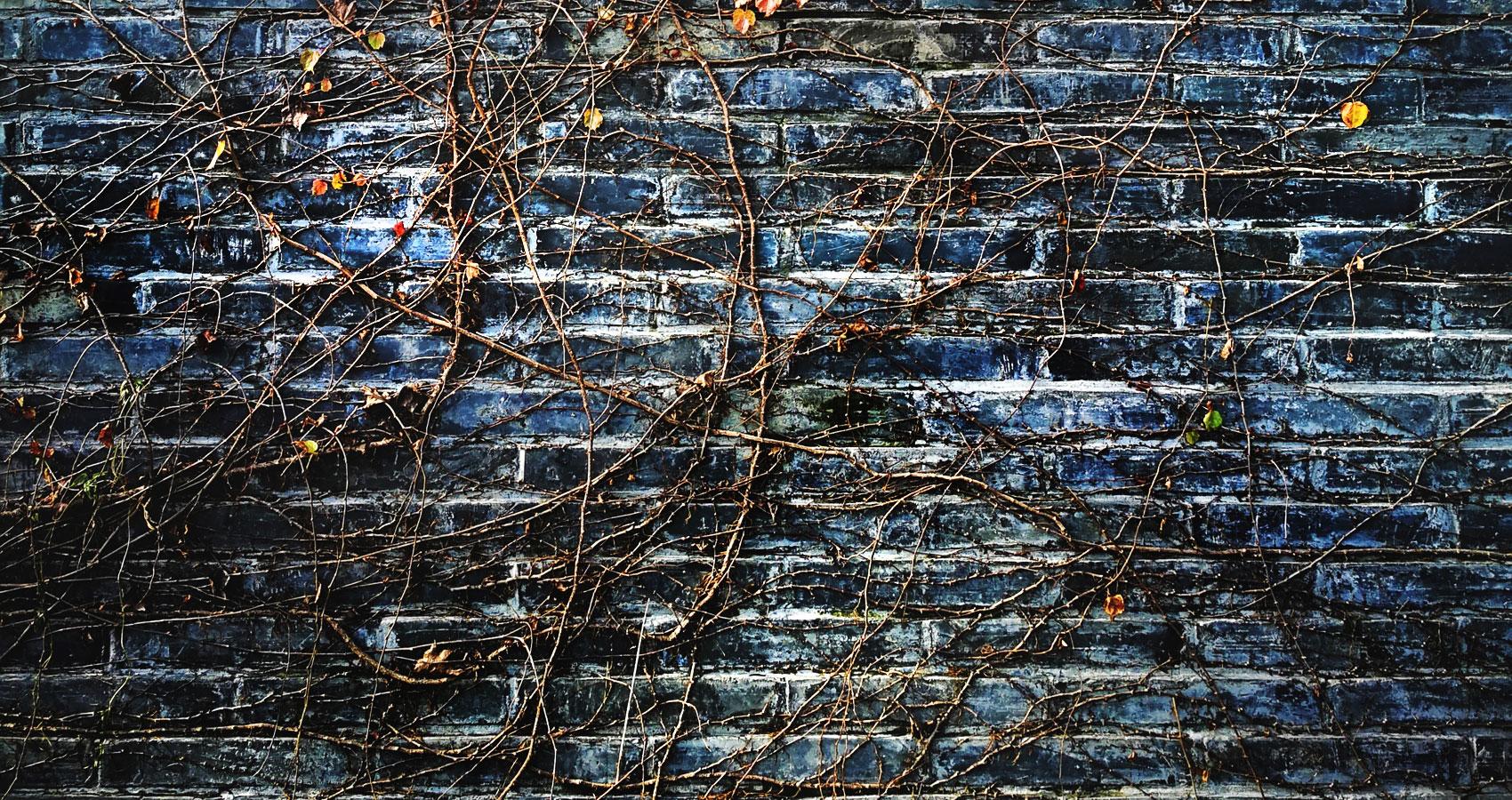 Unwrapping Deceit written by Amanda Eifert at Spillwords.com
