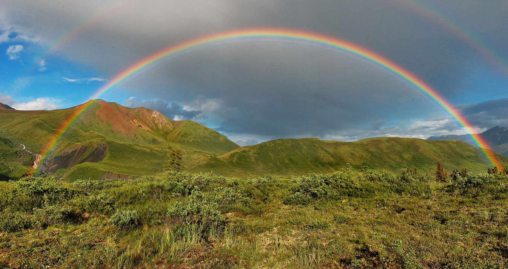 Chasing Rainbows by Steve Pearson at Spillwords.com