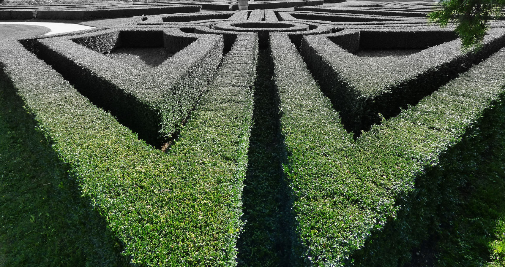 Mystery & Maze... written by Jan Smith at Spillwords.com