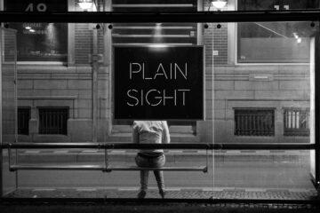 Plain Sight written by Lillian Stabileat Spillwords.com