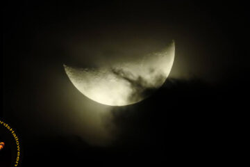 All Hallow's Moon written by Nobby66 at Spillwords.com
