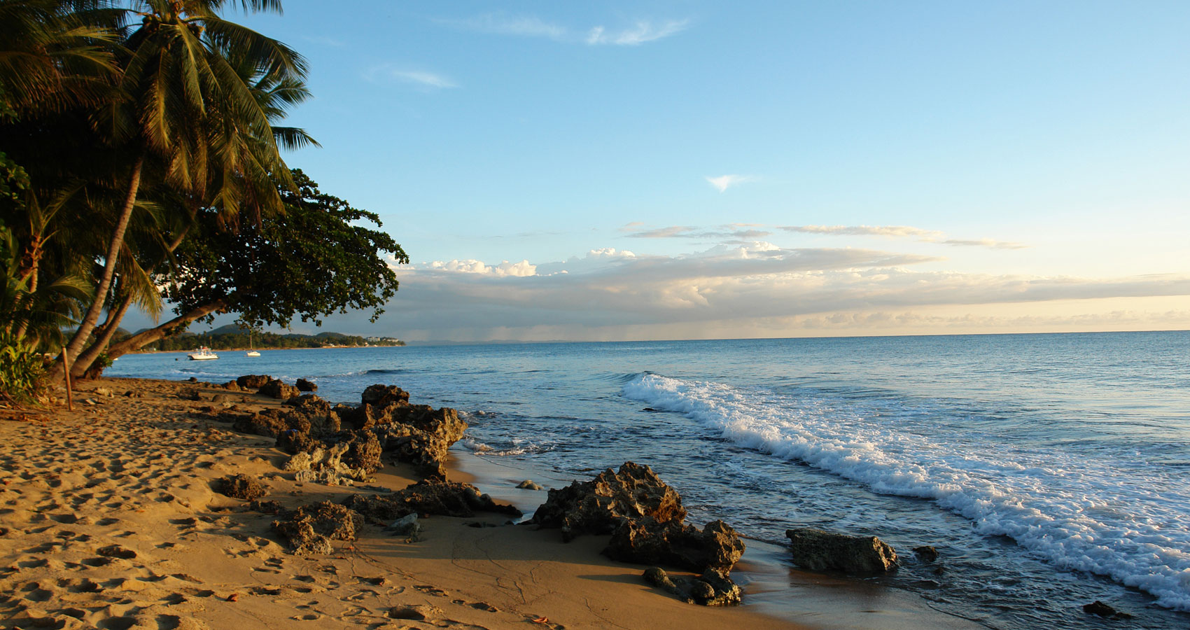 'Canto a Puerto Rico' Mi Borinquén by José A. Gómez at Spillwords.com