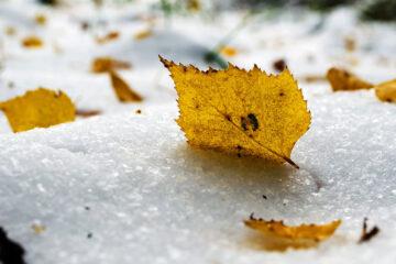 Seasons writen by Amit Agarwalla at Spillwords.com