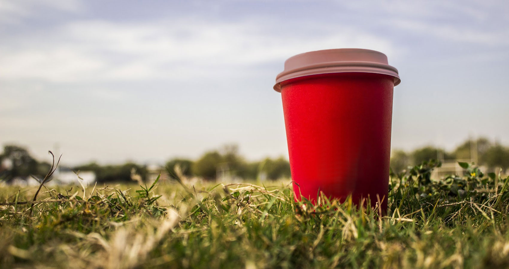 Red Cup written by Dan Leicht at Spillwords.com