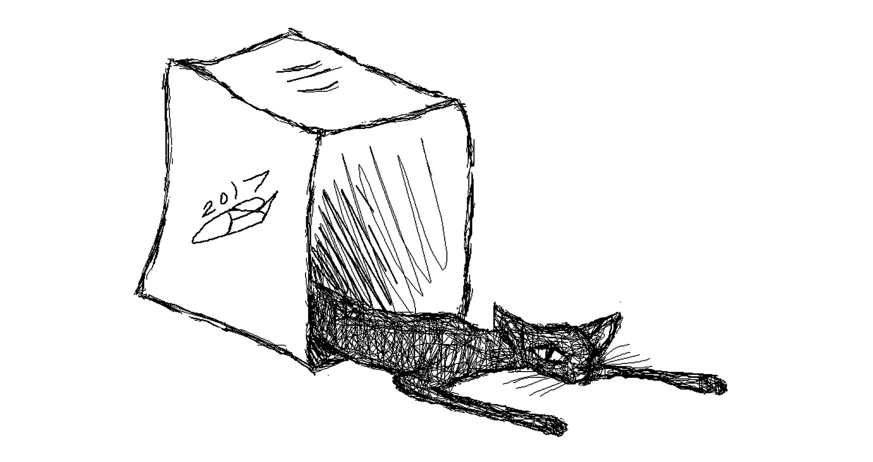 Proverbial Cat written by Robyn MacKinnon at Spillwords.com