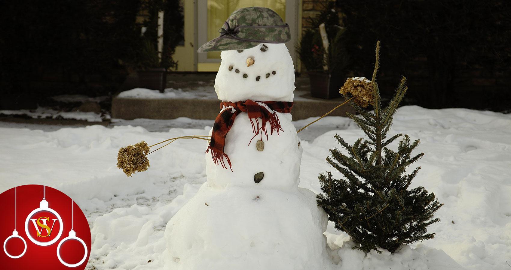 The Snowman written by James Gabriel at Spillwords.com