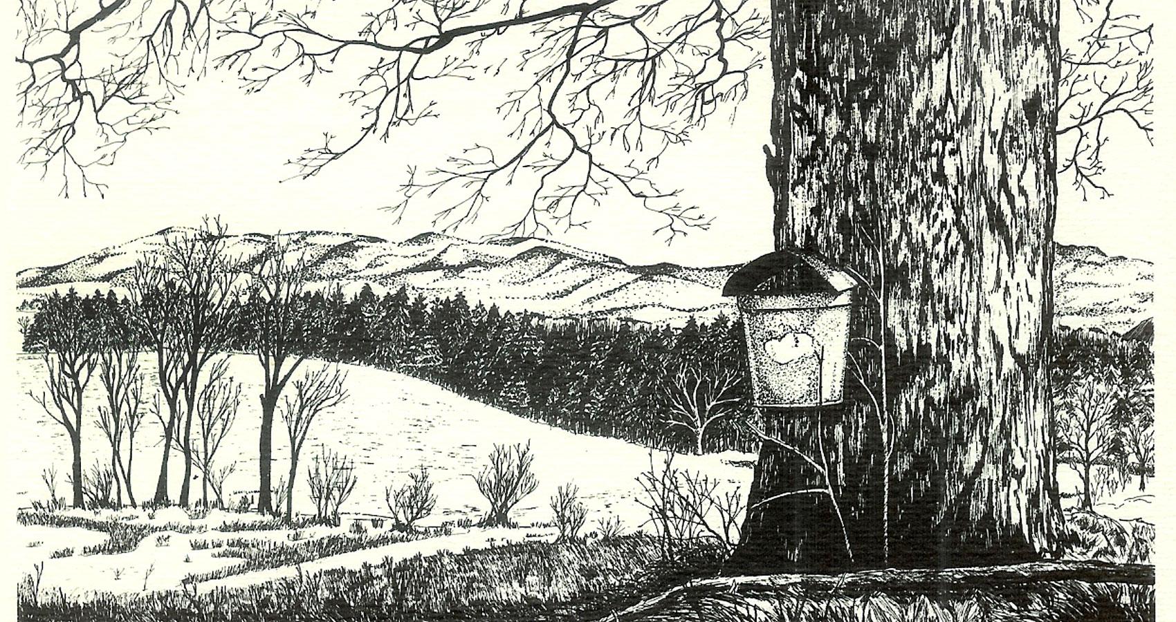 Winter written by Ann Christine Tabakaat Spillwords.com