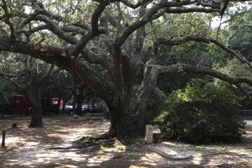 Blind Roosevelt Graves, by DeWayne Moore at Spillwords.com