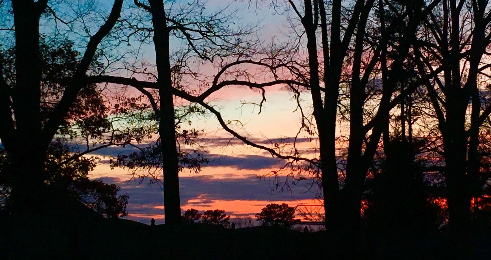 Daily Run written by Sue Vanderbergat Spillwords.com