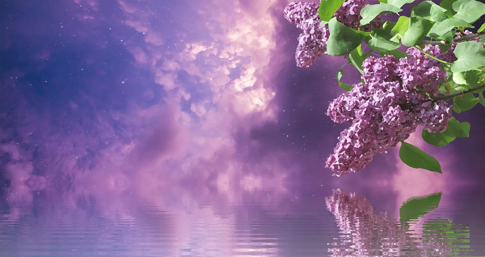 Sky written by Robert Laird at Spillwords.com