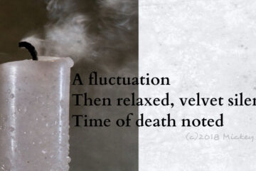 Fluctuation written by Mickey Kulp at Spillwords.com
