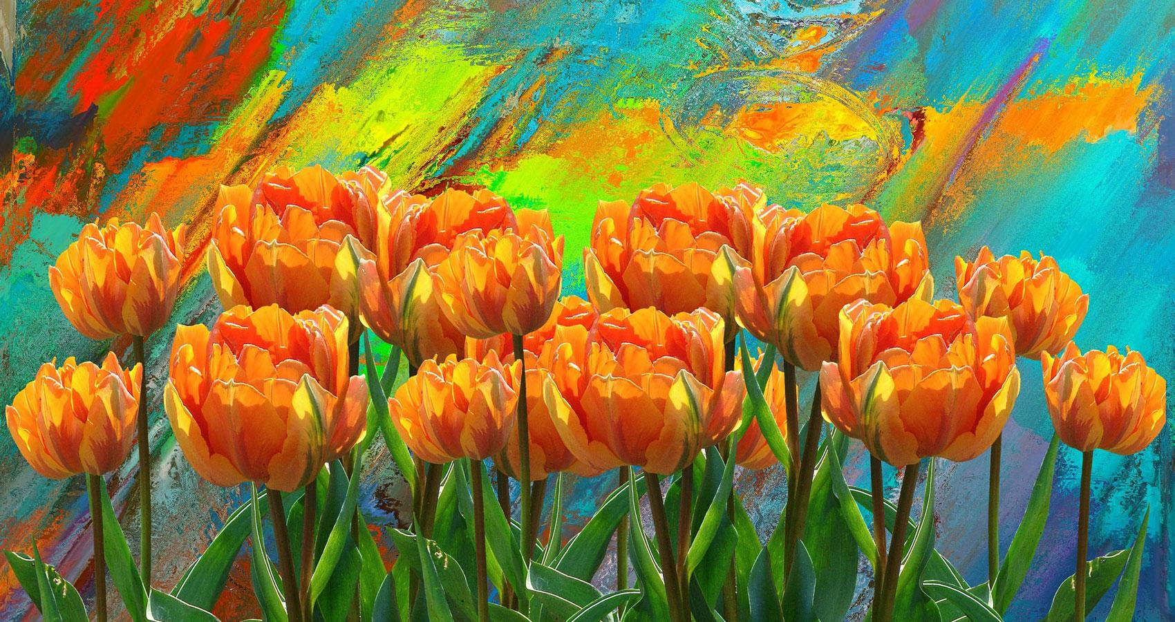 Sonnet To A Velvet Rhapsody written by Ken Allan Dronsfield at Spillwords.com