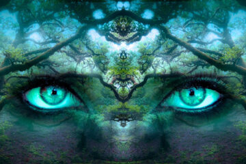 The Enchanted Garden Of Solitude, written by Camille at Spillwords.com
