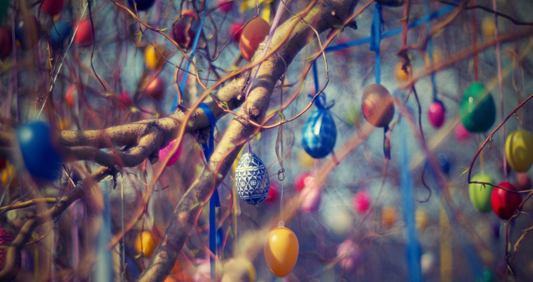 The Easter Egg Hunt by Roger Turner at Spillwords.com